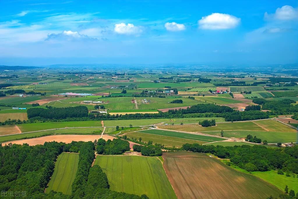 土地收回案件裁判规则25则(干货总结)
