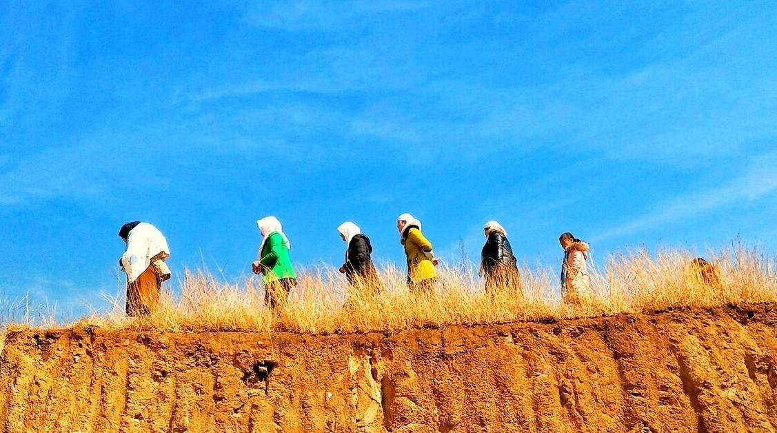 最高法判例:行政机关无权确定农村集体经济组织成员的资格