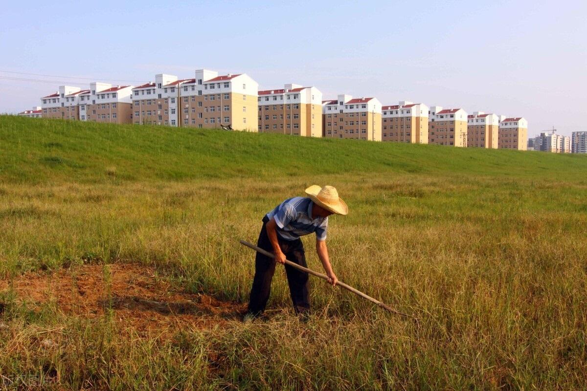 """海南出台""""18条措施"""":鼓励农户将闲置宅基地流转给经营者"""