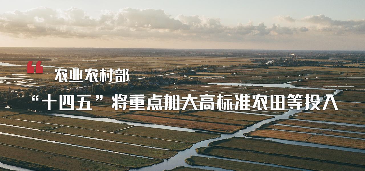 """农业农村部:""""十四五""""将重点加大高标准农田等投入"""